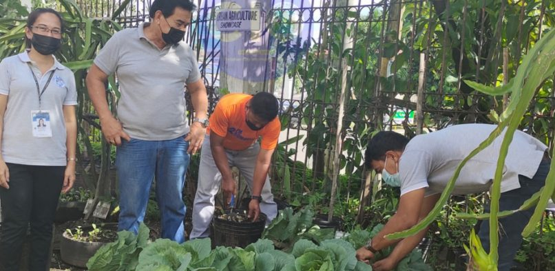 ADVANCING FOOD SECURITY WITHIN COMMUNITIES