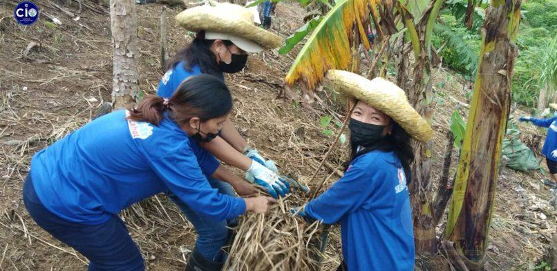 20 taga Norte Tacloban Scholars ha Farming han TESDA, PITAHAYA FARM