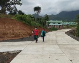 EcoFarm access roads sementado na
